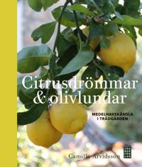 Citrusdrömmar & olivlundar : medelhavskänsla i trädgården