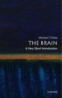 The Brain: A Very Short Introduction