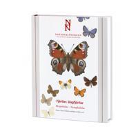 Fjärilar: Dagfjärilar: Hesperiidae-Nymphalidae klotband