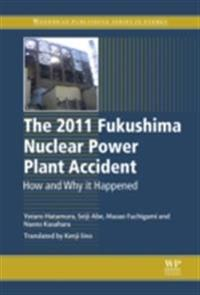 2011 Fukushima Nuclear Power Plant Accident