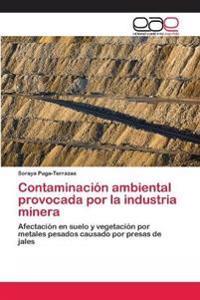 Contaminacion Ambiental Provocada Por La Industria Minera