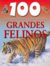 100 cosas que deberias saber sobre los grandes felinos / Big Cats