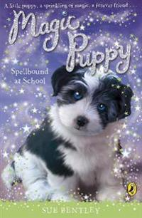 Magic puppy: spellbound at school