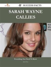 Sarah Wayne Callies 47 Success Facts - Everything you need to know about Sarah Wayne Callies