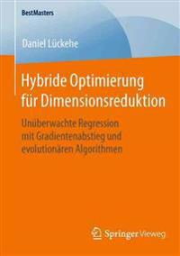 Hybride Optimierung F R Dimensionsredu