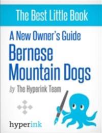 New Owner's Guide to Bernese Mountain Dogs