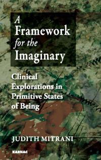Framework for the Imaginary