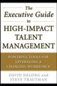 Executive Guide to High-Impact Talent Management: Powerful Tools for Leveraging a Changing Workforce