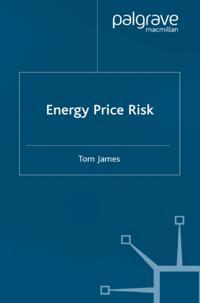 Energy Price Risk