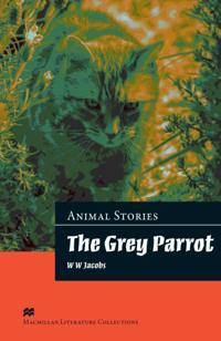 Grey Parrot Advanced