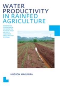 Water Productivity in Rainfed Agriculture
