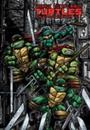 Teenage Mutant Ninja Turtles: The Ultimate Collection 5