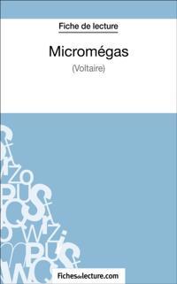 Micromegas de Voltaire (Fiche de lecture)
