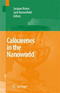Calixarenes in the Nanoworld