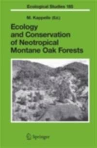 Ecology and Conservation of Neotropical Montane Oak Forests