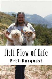 11: 11 Flow of Life