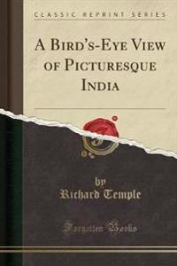 A Bird's-Eye View of Picturesque India (Classic Reprint)