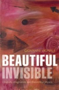 Beautiful Invisible: Creativity, imagination, and theoretical physics