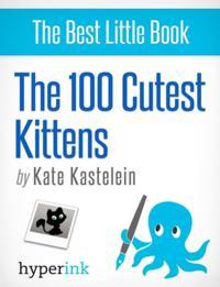 100 Cutest Kittens
