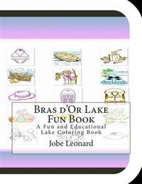 Bras D'Or Lake Fun Book: A Fun and Educational Lake Coloring Book