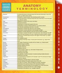 Anatomy Terminology