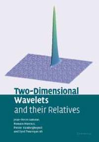 Two-Dimensional Wavelets and their Relatives