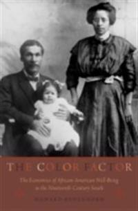 Color Factor: The Economics of African-American Well-Being in the Nineteenth-Century South