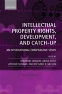 Intellectual Property Rights, Development, and Catch Up An International Comparative Study