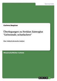 Uberlegungen Zu Feridun Zaimoglus Liebesmale, Scharlachrot