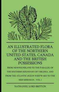 An Illustrated Flora of the Northern United States, Canada and the British Possessions