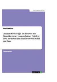 """Landschaftsokologie Am Beispiel Des Biospharenreservatausschnittes """"Mittlere Elbe"""" Zwischen Den Zuflussen Von Mulde Und Saale"""