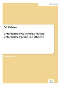 Unternehmenswachstum, Optimale Unternehmensgroe Und Effizienz