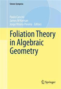 Foliation Theory in Algebraic Geometry