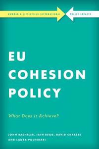 EU Cohesion Policy in Practice: What Does It Achieve?