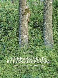 Porraskiveltä puiden siimekseen - Down the stairs to a shady grove