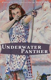 Underwater Panther
