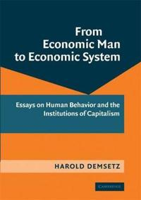 From Economic Man to Economic System