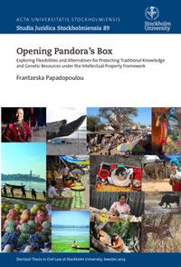 Opening Pandora's box : Exploring flexibilities and alternatives for protecting traditional knowledge and genetic resources under the intellectual property framework