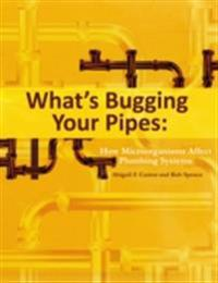 What's Bugging Your Pipes