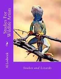 Snakes and Lizards: Studies for Wildlife Artista