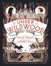 Under wildwood - the wildwood chronicles, book ii