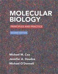 Molecular Biology: Principles and Practice 2e & Launchpad for Cox's Molecular Biology (6 Month Access)