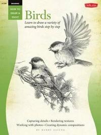 Drawing: Birds