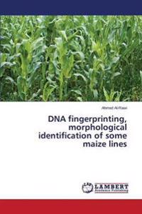 DNA Fingerprinting, Morphological Identification of Some Maize Lines