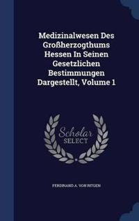 Medizinalwesen Des Grossherzogthums Hessen in Seinen Gesetzlichen Bestimmungen Dargestellt, Volume 1