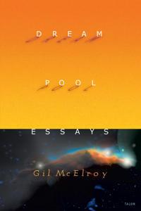 Dream Pool Essays