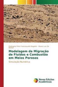 Modelagem Da Migracao de Fluidos E Combustao Em Meios Porosos