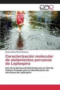 Caracterizacion Molecular de Aislamientos Peruanos de Leptospira