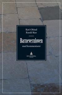 Barnevernloven - Kari Ofstad, Randi Skar pdf epub