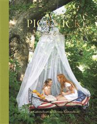 Picknick : utflykter & inflykter